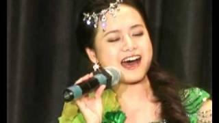 何怡在纽约华人春节晚会鸟语(苗语)飙歌