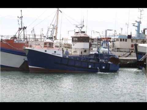 For Sale: 13.85m GRP Fishing Vessel