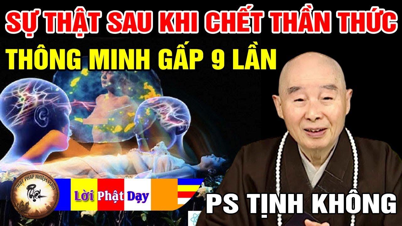 Download Sự thật sau khi chết Thần Thức thông minh gấp 9 lần? Pháp Sư Tịnh Không   Phật Pháp Nhiệm Màu