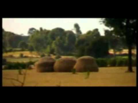 Ethiopian Music   AddisZefen