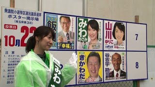 Learning to fly: Ex-flight attendant aims high in Japan vote