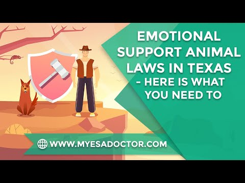 Emotional Support Animal Laws In Texas - Here's What You Should Learn
