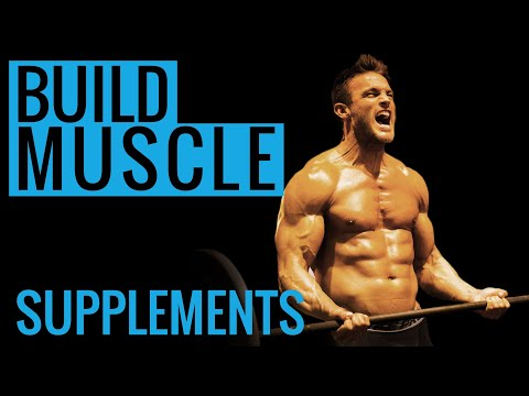 Best protein supplement for muscle growth