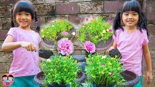 หนูยิ้มหนูแย้ม   ปลูกดอกไม้คุณนายตื่นสาย