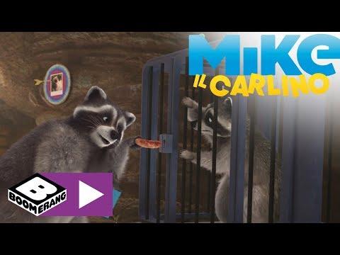La Chiave | Mike Il Carlino | Boomerang 🇮🇹