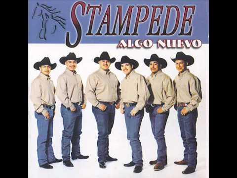 Stampede - Cuando.wmv
