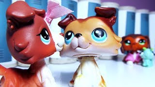 Littlest Pet Shop: Popular (Episode #22: Keep an Eye on Your Boy)