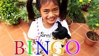 Bingo Dog Song with Lyrics