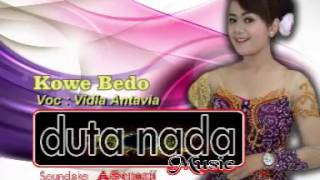 Kowe Bedo - Vidia Antavia ( DUTA NADA )