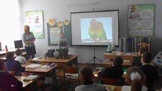 Фрагмент уроку природознавства. Материк Африка.