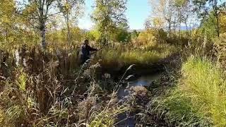 Рыбалка в ручье на Камчатке