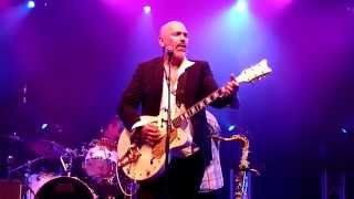 The Black Sorrows - No Such Pain As Love @ Bluesfest 2014