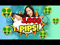 Amazing Forex Signals 5000 Pips
