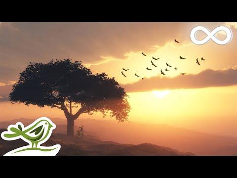 Beautiful Romantic Music: Relaxing Music, Guitar Music, Violin Music