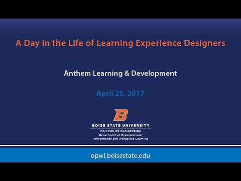 A Day in the Life of Learning Experience Designers with Anthem Learning & Development