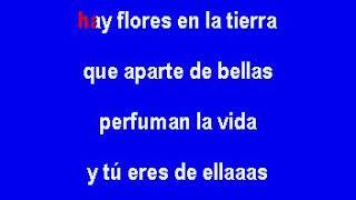 Vicente Fernández Me tienes mimado Karaoke