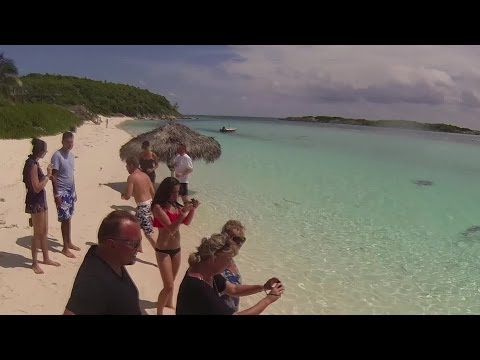 Powerboat Adventures Nassau Bahamas - Iguana & Shark Feeding