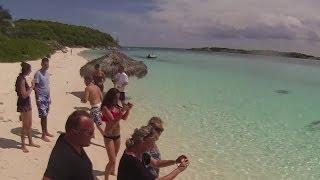 Powerboat Adventures Nassau Bahamas - Iguana & Shark Feeding HD