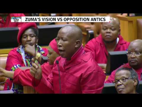 Julius Malema asks parliament to protect MP's from security personnel