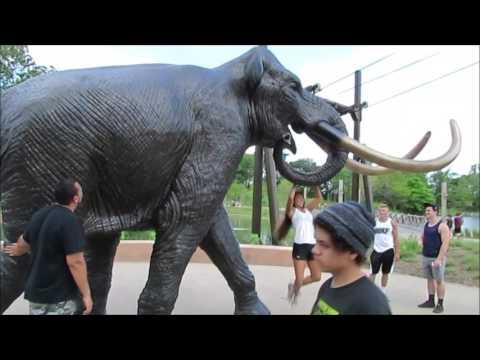 Omaha Zoo Henry & Aquarium