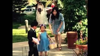 My cousin's Wedding in Boulder, Colorado
