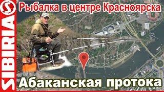 Ловля в центре Красноярска  Рыбалка на абаканской протоке остров Отдыха