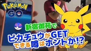 【ポケモンGO】7/23新宿御苑でピカチュウがGETできる噂はホントなのか!? タマゴもふかさせたよ! Pokemon GO in  Shinjuku Gyoen Tokyo thumbnail