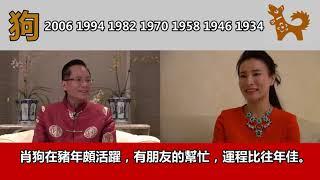 伍子明風水大師2019十二生肖流年預測-狗(普通話)