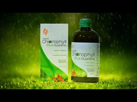 proyoung-clorophyll-plus-guarana-liquid-benifits-+918077504817