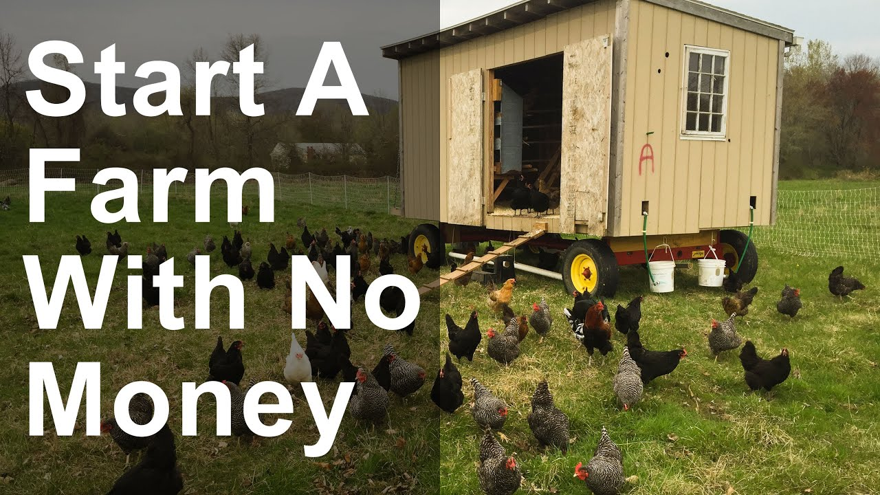 How to start a farm with no money youtube for How to get money to buy land