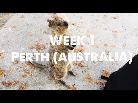 Solo backpacking Australia - Week 1 - Perth & Fremantle
