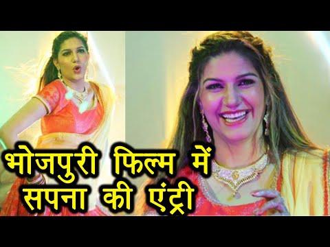 Sapna Choudhary to DEBUT in Bhojpuri Film with Ravi Kishan | FilmiBeat