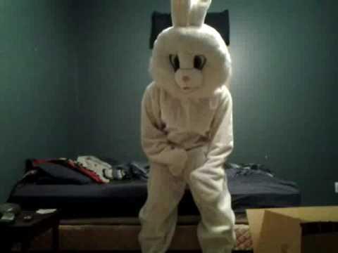 Bunny mascot suit