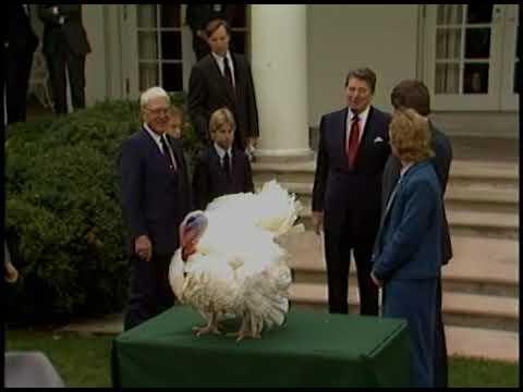 President Reagan's Photo Opportunities on November 25, 1985