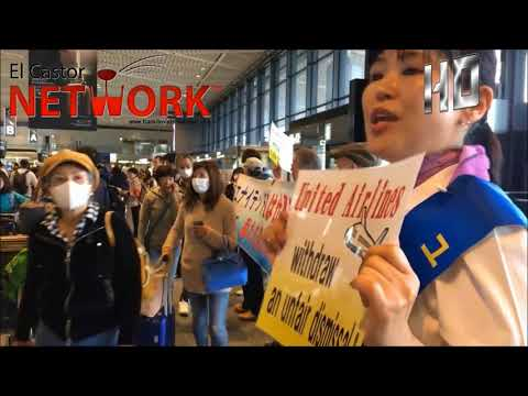 United Airlines faces racial discrimination lawsuit in Japan | El Castor Network™