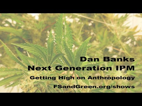 Dan Banks, Next Generation IPM