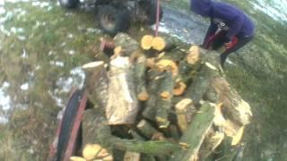 Zwożenie drewna quadem ATV110 // AgroWielkopolskie