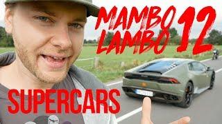 Supercars - Mambo Lambo! Livestream #16
