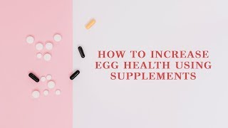 How To Increase Egg Health Using Supplements
