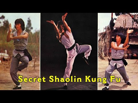 Wu Tang Collection - Secret Shaolin Kung Fu (Japanese Subtitled)