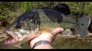 USA КИНО 123. Особенности американской рыбалки..