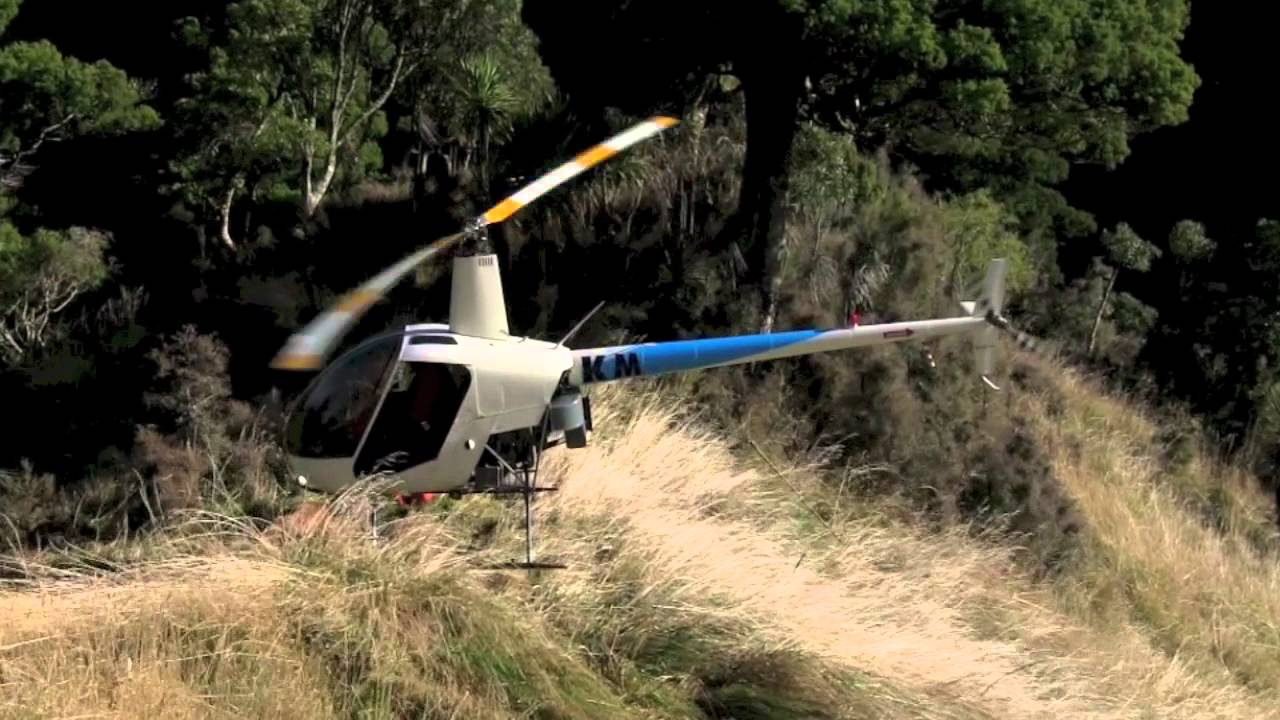 hog hunting from helicopter with Watch on Watch furthermore Who Can Stop These Adorable Pigs also Anupspage1074 besides 39979056 additionally Hunting In Australia.
