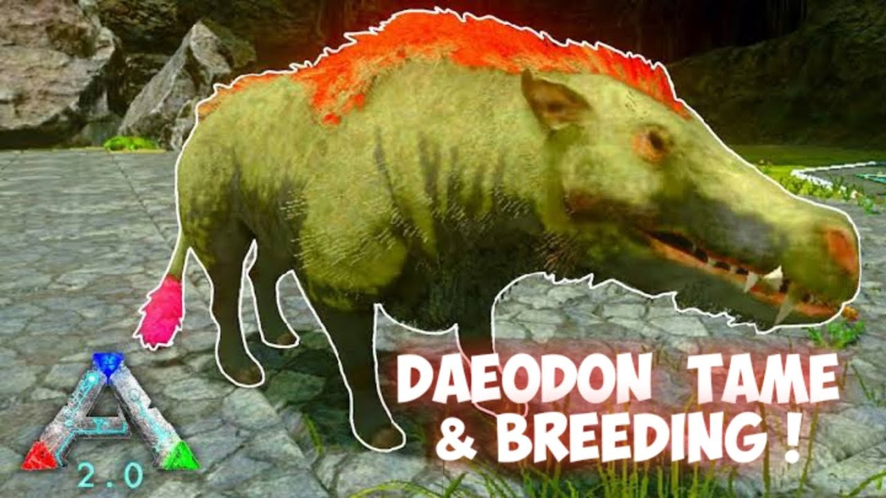 Daeodon Tame Breeding Ark Survival Evolved Mobile Youtube Die daeodon sind sehr arggessiv, stark und schnell. youtube