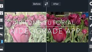 VIDEOGRADE app Color Corecting Tutorial FiLMiC Pro v6 LOG iPhone Cinematic