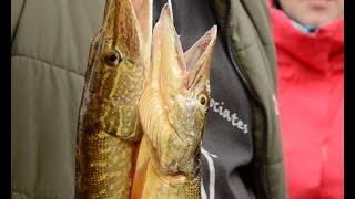 Турнир по ловле рыбы