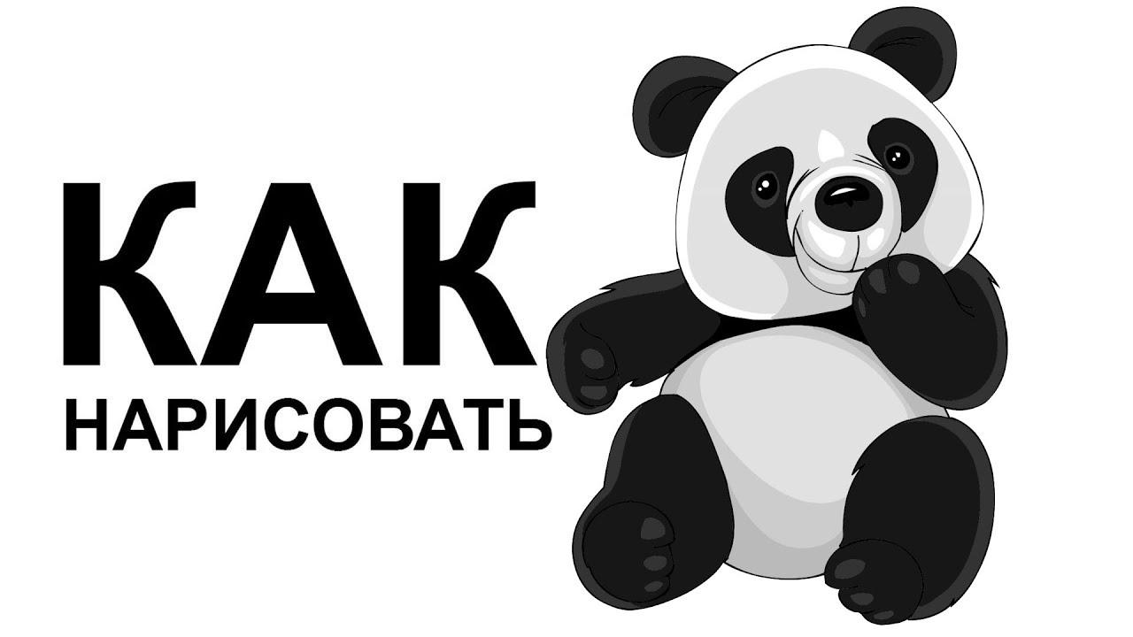 Обои панда милый бамбук картинки на рабочий стол раздел