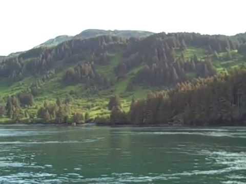Halibut fishing in kodiak alaska 1 youtube for Kodiak fishing charters