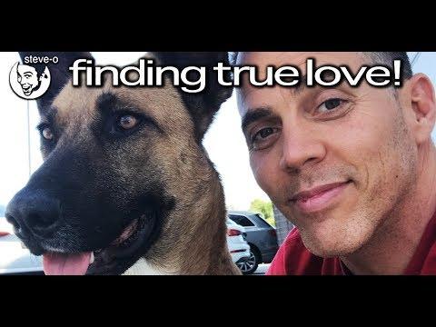 Finding True Love!  SteveO