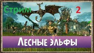 Total War Warhammer 2 - Лесные Эльфы - [2] - Идем за не девственными жопами Бретонцев
