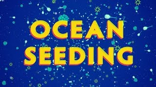 Ocean Seeding - A New Technology that can Save Marine Life